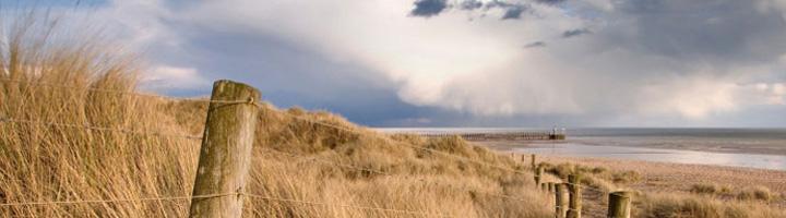 The Littlehampton Sand Dunes